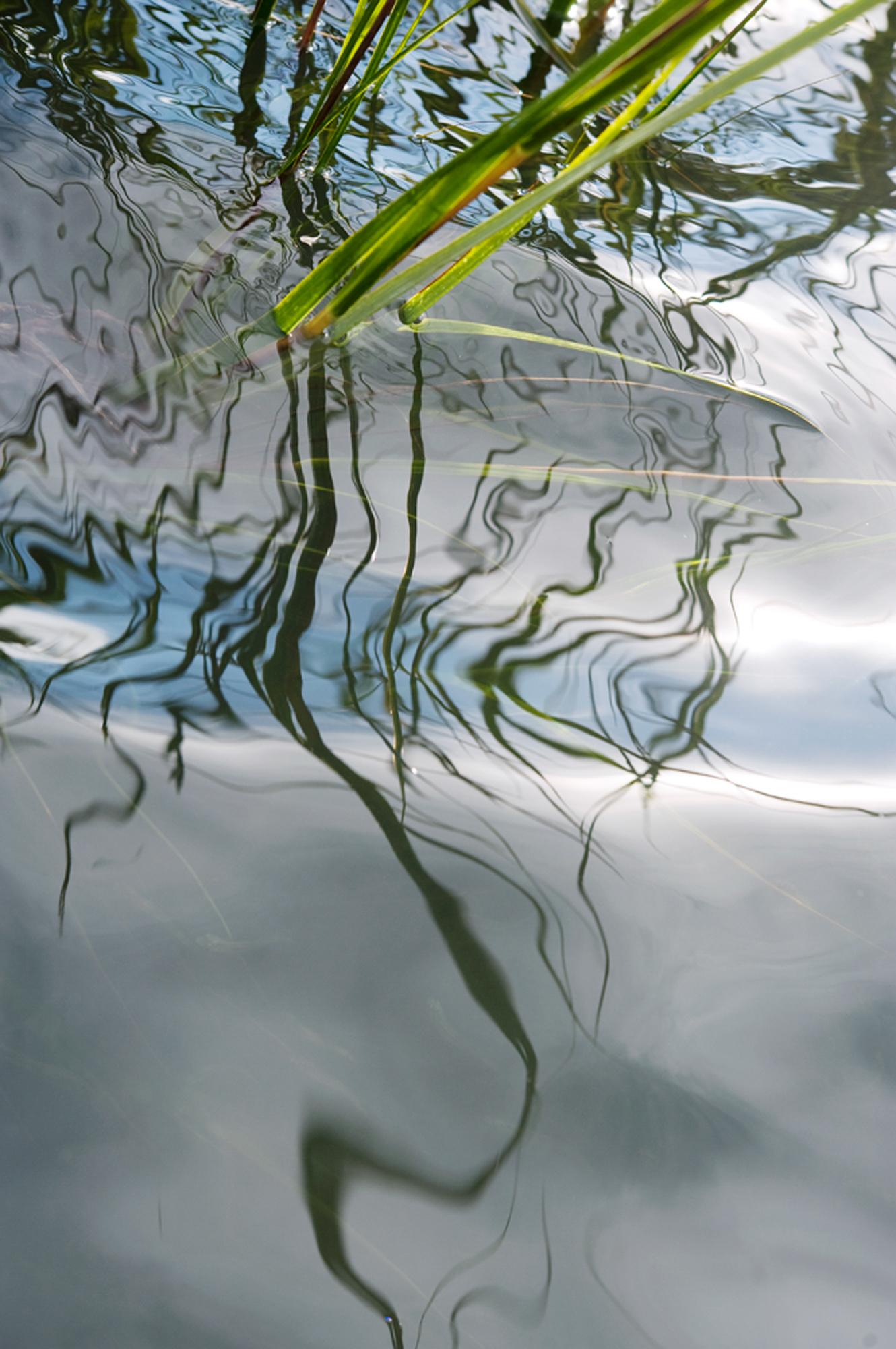 Linear Veil III, 2012 (Touching the Farm River)