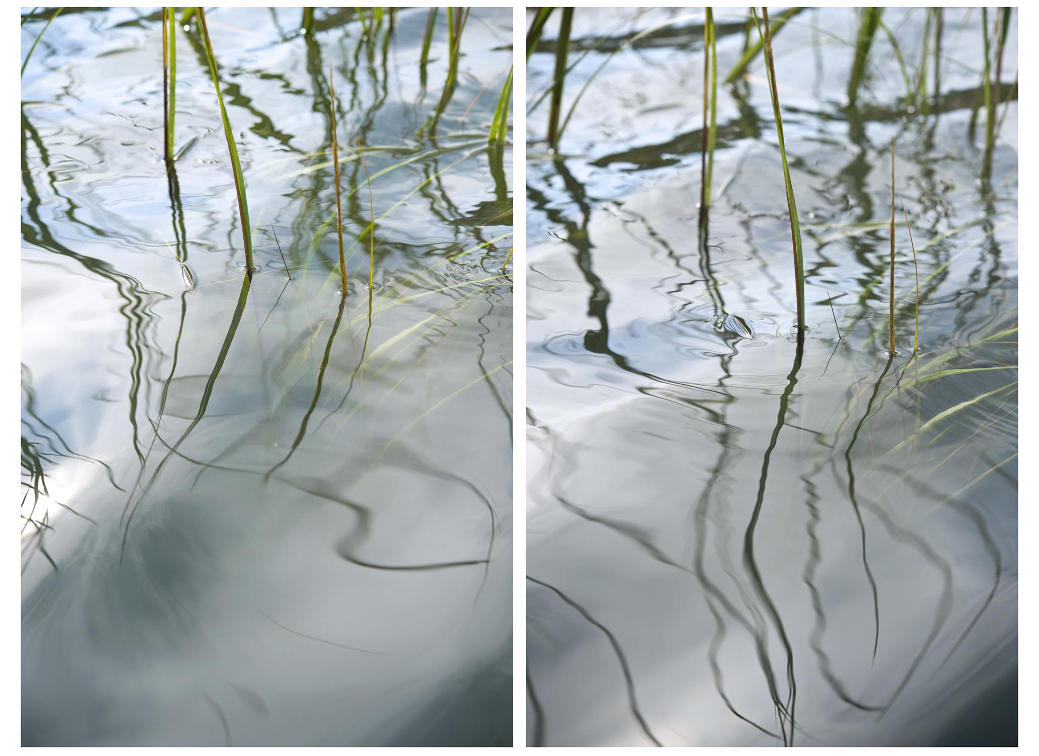 Linear Veil, 2012 (Binary Rivalry)