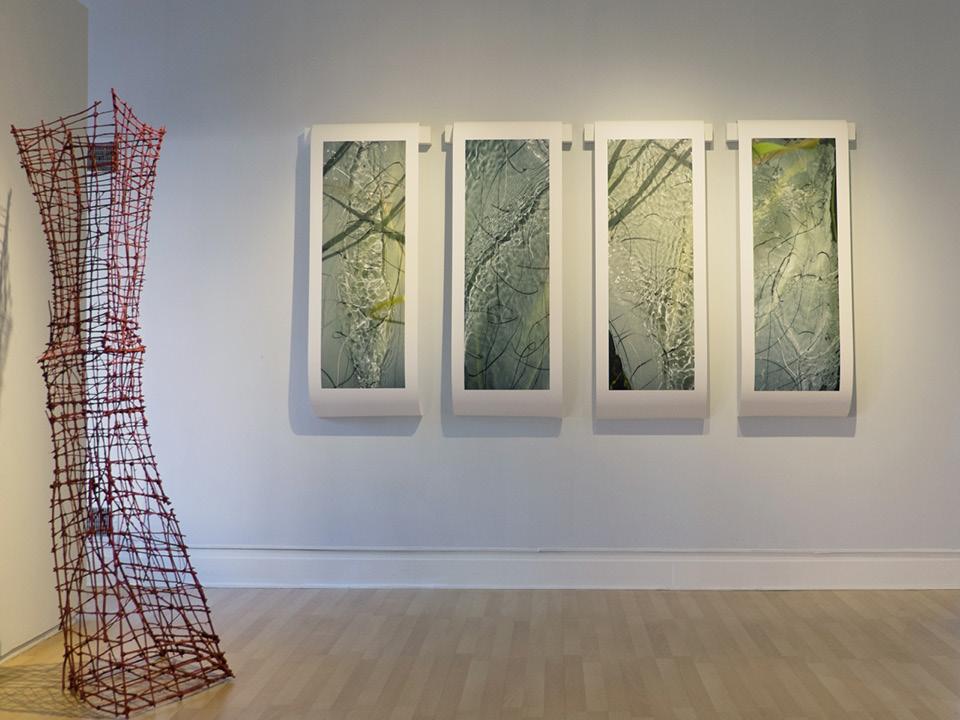 LC Exhibitions 2015 Addison Ripley
